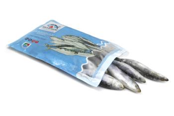 sardinha congelada